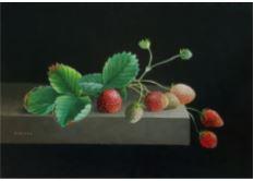 Bob Krans Aardbeien op paneel